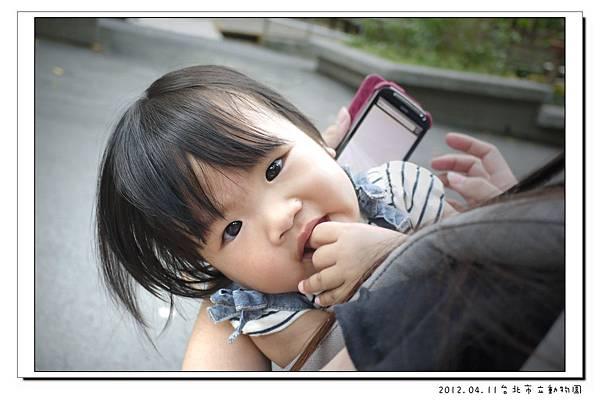 2012.04.11台北市立動物園 (7)