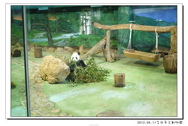 2012.04.11台北市立動物園 (10)