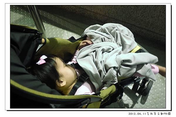 2012.04.11台北市立動物園 (12)