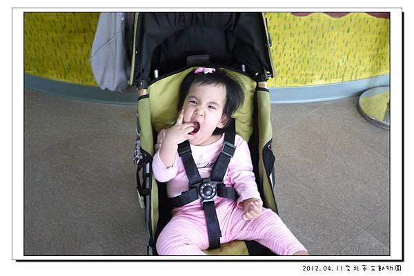 2012.04.11台北市立動物園 (14)