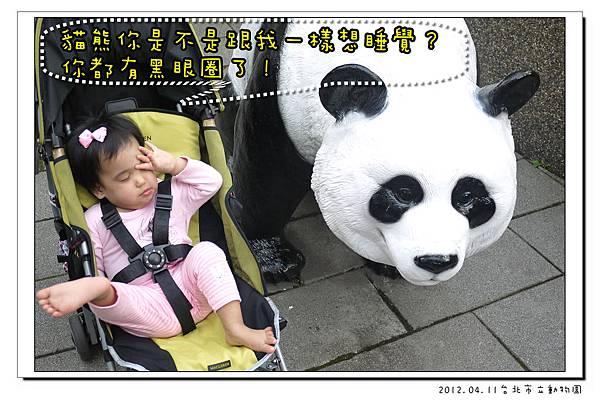 2012.04.11台北市立動物園 (15)