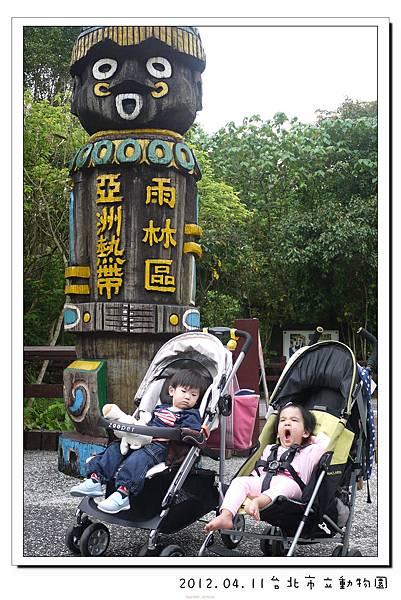 2012.04.11台北市立動物園 (16)