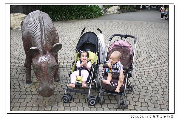 2012.04.11台北市立動物園 (21)