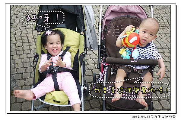 2012.04.11台北市立動物園 (22)