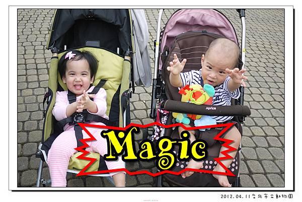 2012.04.11台北市立動物園 (23)