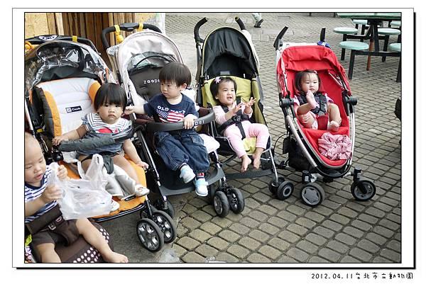 2012.04.11台北市立動物園 (29)