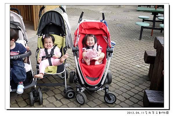 2012.04.11台北市立動物園 (30)