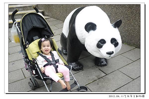 2012.04.11台北市立動物園 (32)