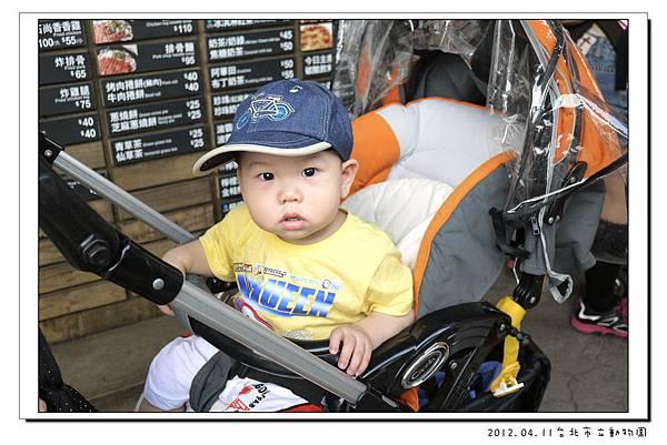 2012.04.11台北市立動物園 (33)