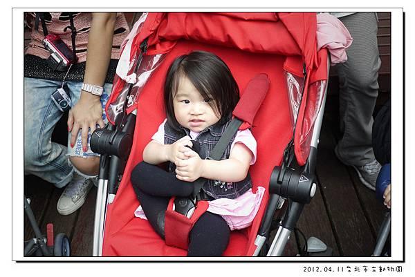 2012.04.11台北市立動物園 (34)