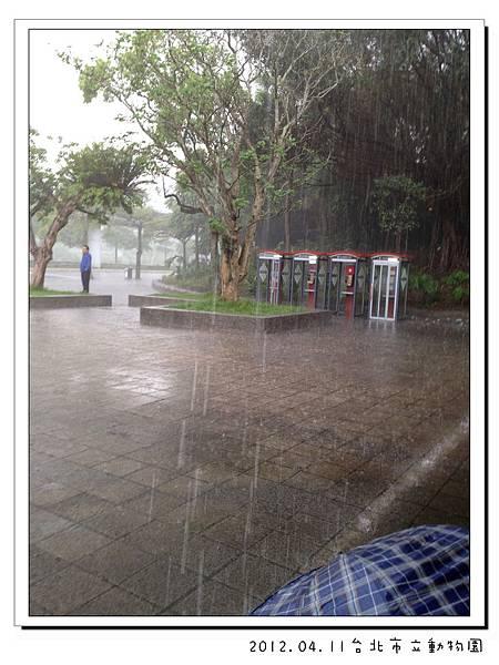 2012.04.11台北市立動物園 (35)