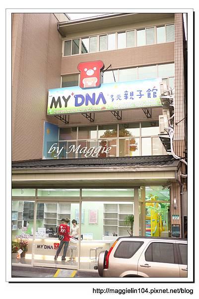 My DNA親子館 (1).JPG