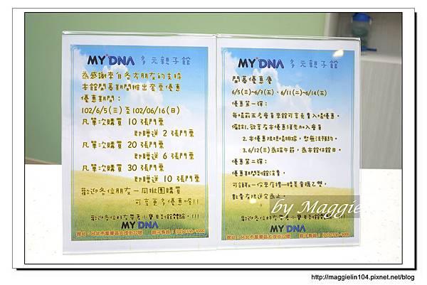 My DNA親子館 (9).JPG