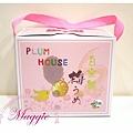 The Plum House 道豐手工梅子 (1).JPG