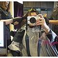 FIN Hair (7).JPG