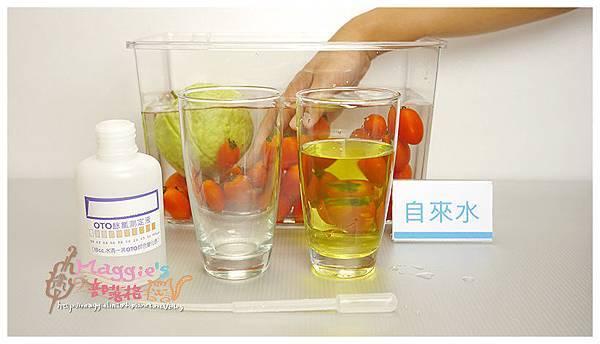Vitaway維他惠活水機 (6).jpg