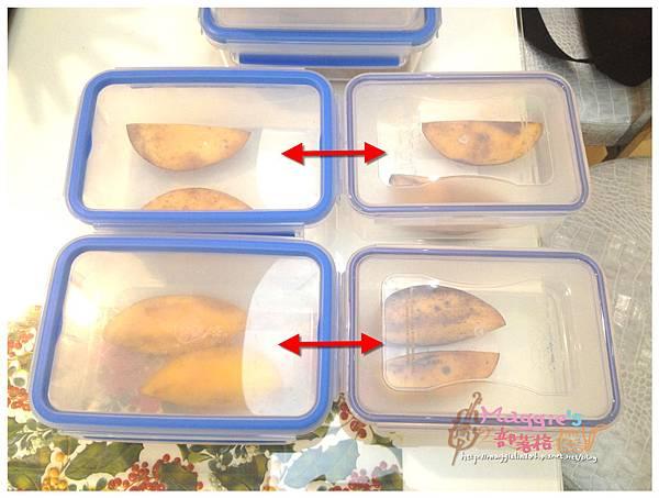 EMSA保鮮盒 (1).JPG