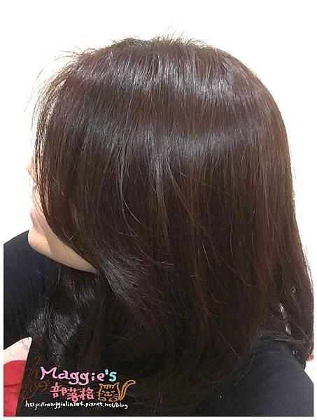 激賞髮型 (36).JPG