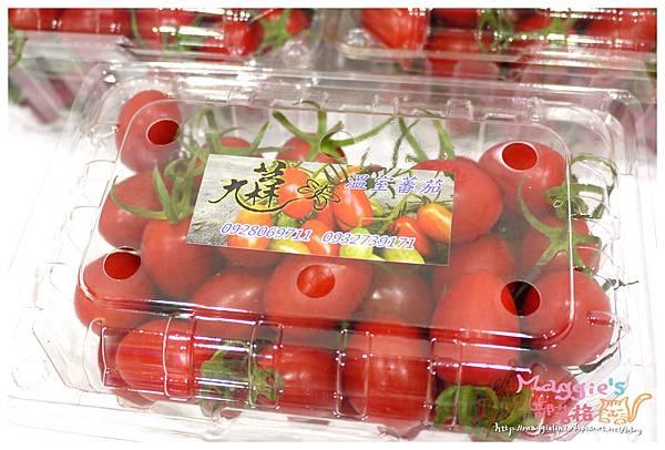 九芎林溫室農園-玉女番茄 (4).JPG