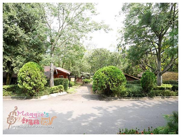 泰雅渡假村 (11).JPG