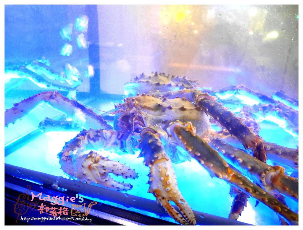 川郎活蟹 (8).JPG