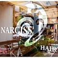 NARCISS (5).JPG