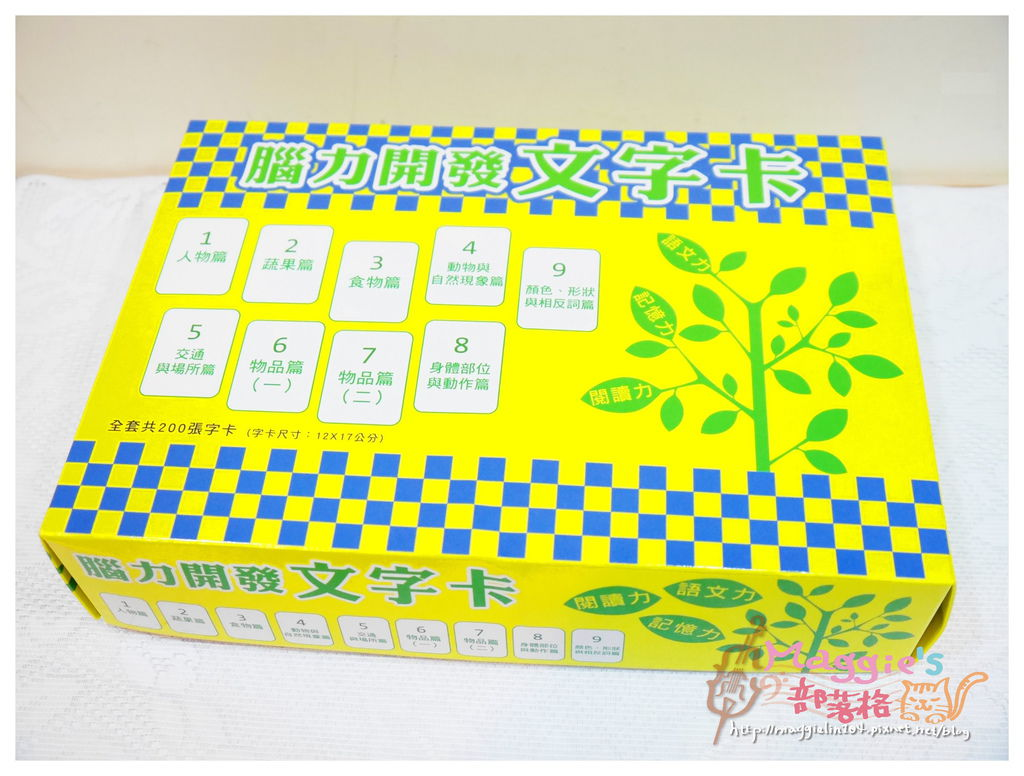 腦力開發字卡 (13).JPG