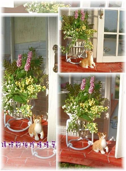 4年前做的袖珍盆花