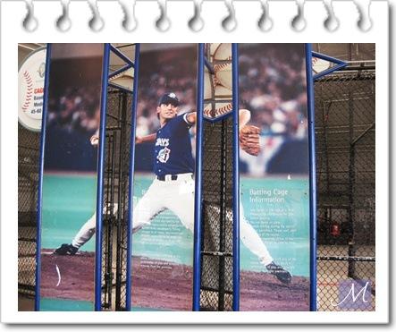 baseball_ web1