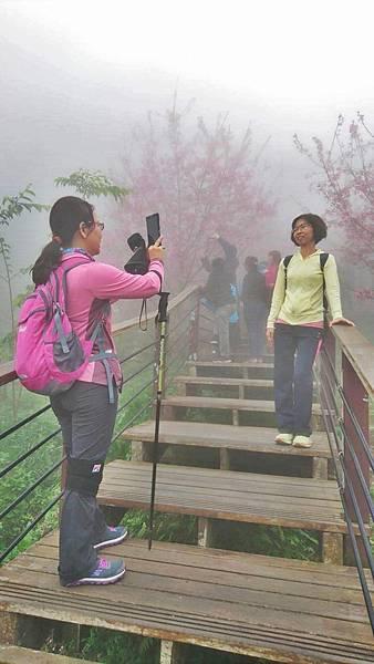濃霧中也要拍照.jpg
