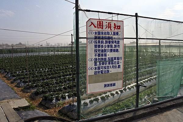 永福草莓園入園須知.JPG