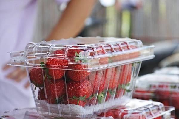 永福草莓園-盒裝草莓.JPG