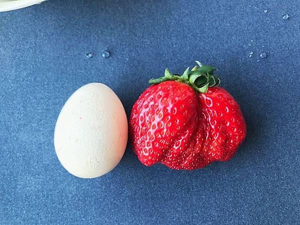 草莓與雞蛋.jpg