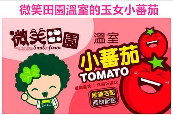 微笑田園溫室的玉女小蕃茄-優惠價1500元3