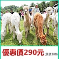 新竹綠世界生態農場優惠門票290元