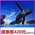國立海洋生物博物館~優惠價420元