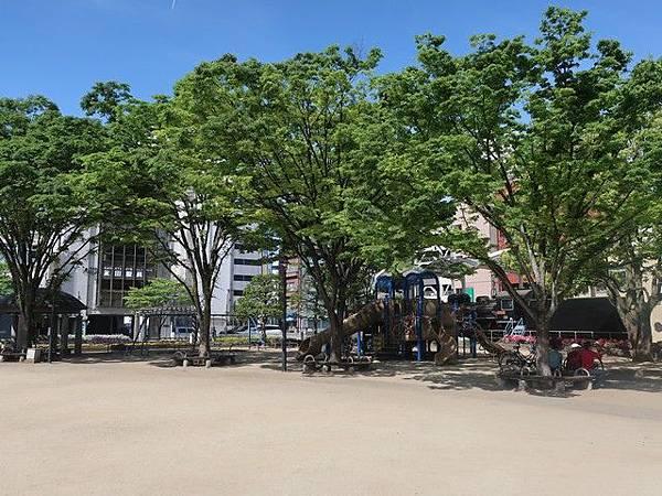 IMG_004若草公園.jpg