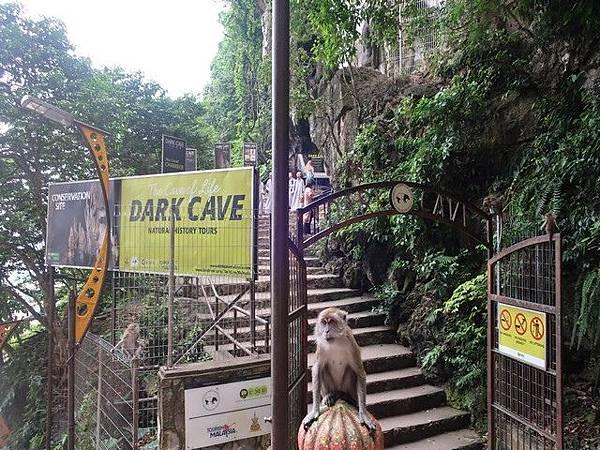 IMG_030黑風洞Batu Caves.jpg