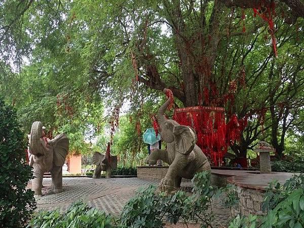 IMG_018祈願樹及群象雕塑.jpg