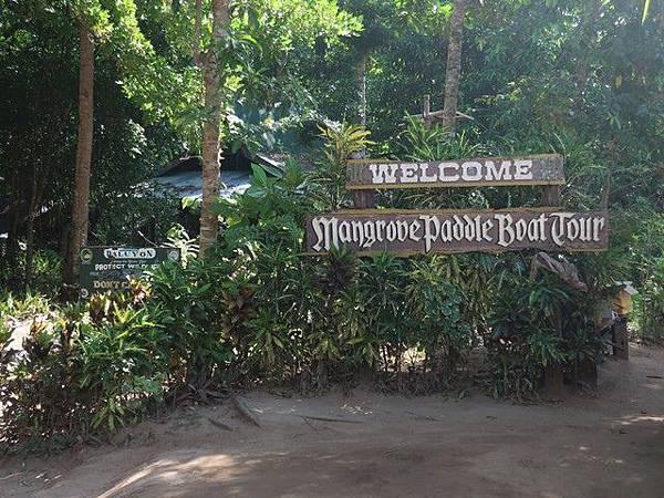 IMG_004紅樹林遊船(Mangrove Paddle Boat Tour).jpg