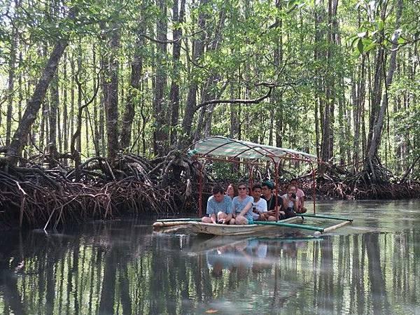 IMG_009紅樹林遊船(Mangrove Paddle Boat).jpg