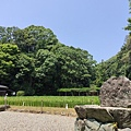 IMG_017御神田.jpg