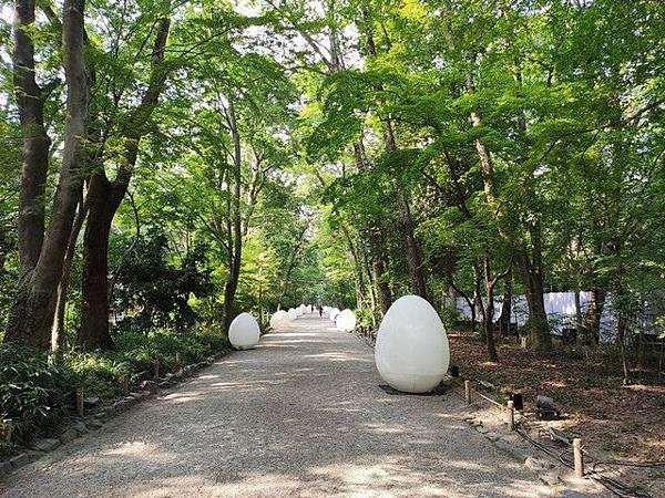 IMG_034下鴨神社-糺之森.jpg