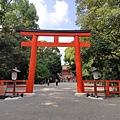 IMG_033下鴨神社-鳥居.jpg