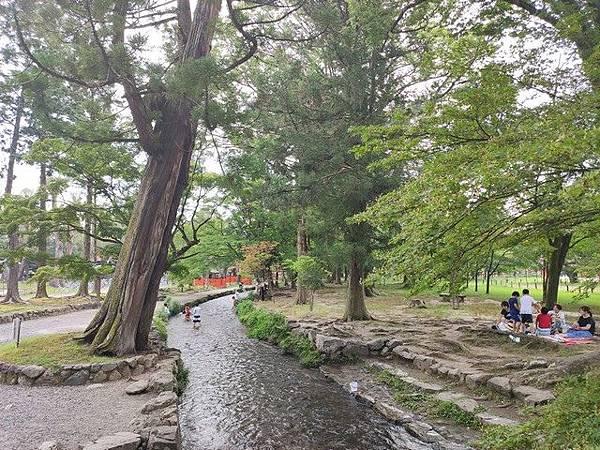 IMG_045上賀茂神社-溪邊.jpg