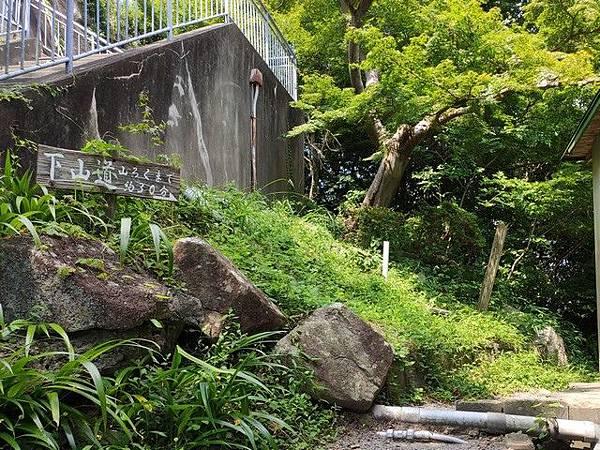 IMG_036八幡山下山道.jpg
