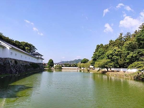 IMG_009彥根城護城河.jpg
