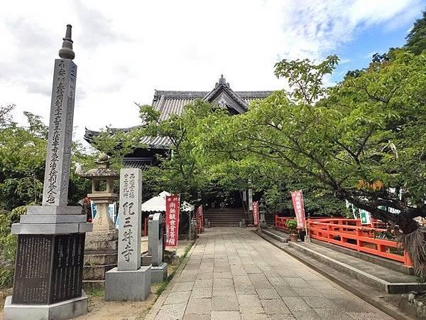 IMG_038紀三井寺-櫻樹.jpg