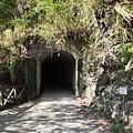 IMG_025白楊步道-隧道.jpg