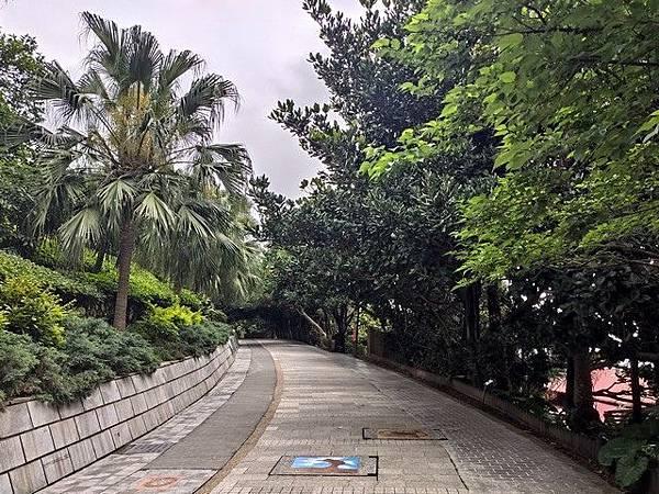 IMG_005野柳地質公園.jpg
